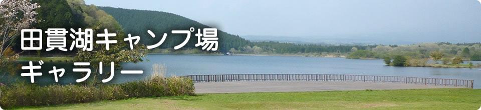 田貫湖キャンプ場ギャラリー